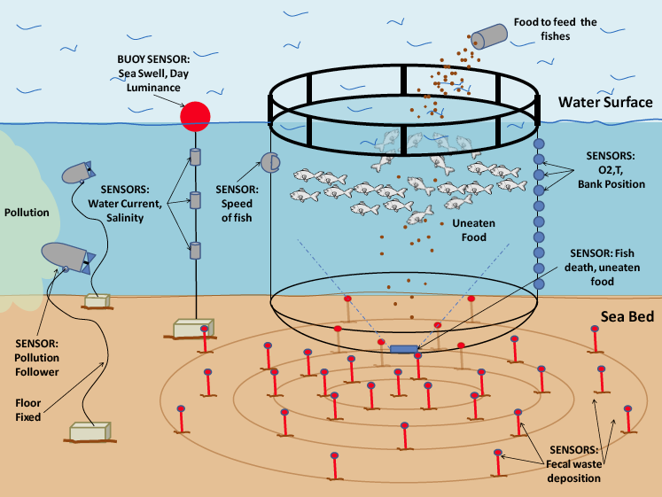 complete fish farm sensors network